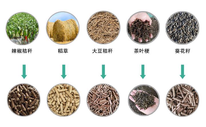 木屑颗粒机生产的木屑颗粒图片