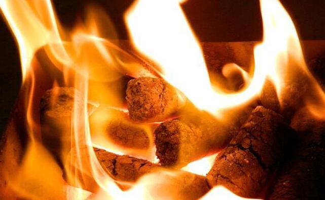 生物质成型颗粒燃料的燃烧特点
