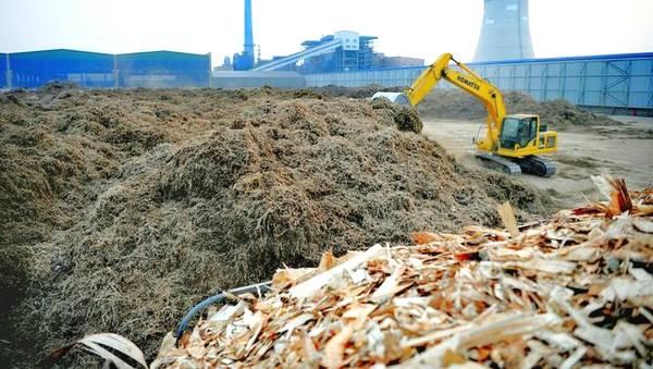 大城县生物质发电公司料场正在垛料操作