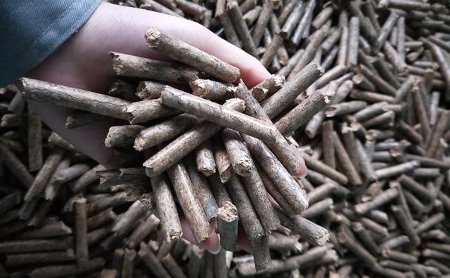锯末颗粒机的木屑颗粒